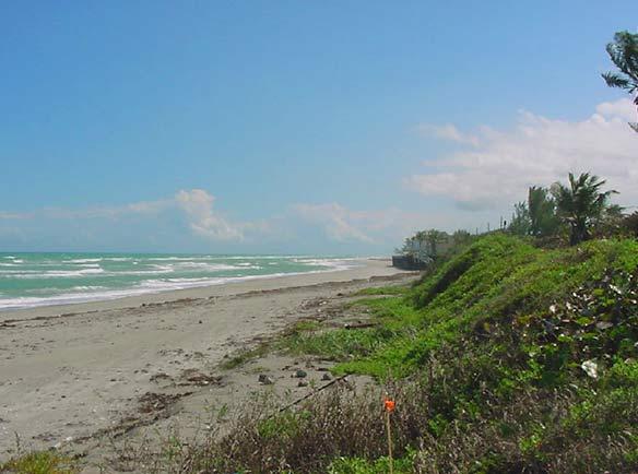 Jupiter Island before beach restoration