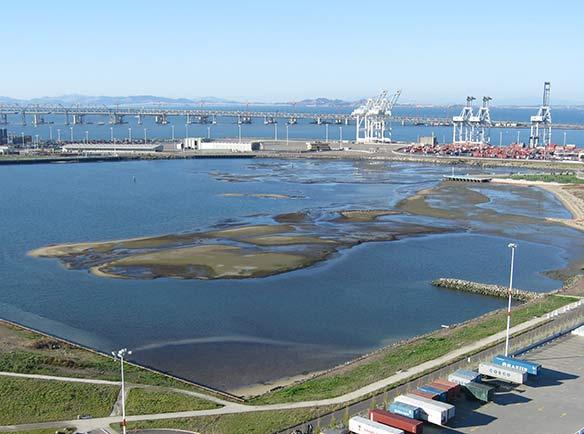 Oakland Middle Harbor Enhancement Area