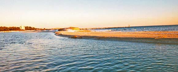 Three Bays Preservation – Before